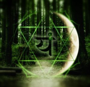 heart chakra in forest - connect to nature for open heart chakra