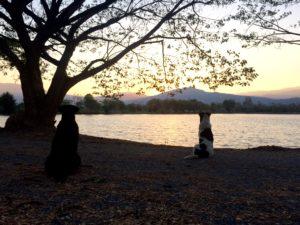 Nature, lake, mountains, attractions Chom Tong Vipassana Meditation Center